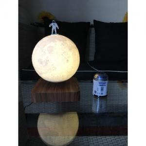 Moonflight2
