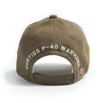 P 40 warhawk cap back